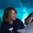 GWC faculty and staff work with the Aquarium of the Pacific to educate kids, nationally and internationally, through broadcasting. The Aquarium of the Pacific received a grant from the Roddenberry...